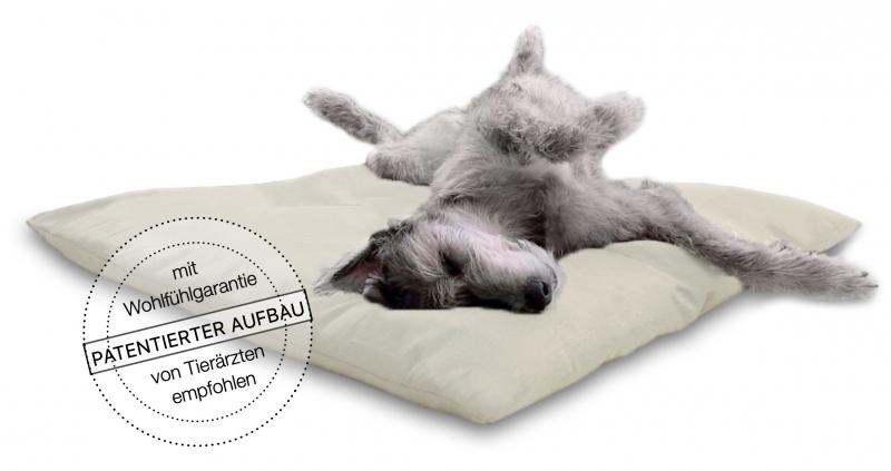media/image/Irischer-Wolfshund-Irische-Wolfshunde-Irish-Wolfhound-tieraerzte-empfohlen-hundebett-hundebetten-hundekissen-hundekorb-hundekoerbchen-katzenkissen-katzenbett_3.jpg
