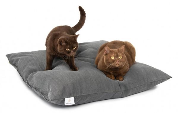 """Katzenkissen M 80x80cm """"für ausgewachsene Katzen"""" DARLING LITTLE PLACE®"""