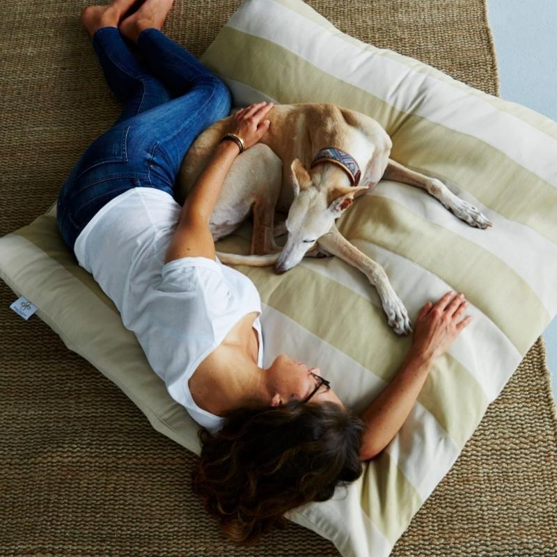 media/image/Hundebett-Hundebetten-Hundekissen-Hundedecke-Hundekorb-Hundekoerbchen-Irischer-Wolfshund-2.jpg